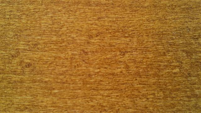 Color chart stain in beech veneer fabbrica